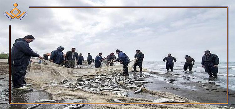 صید ۱۳۱۱ تن ماهی استخوانی از دریای خزر تا پایان آذرماه